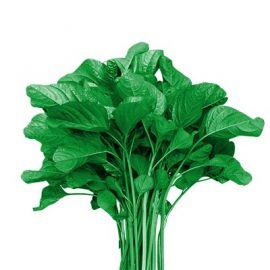 Spinach (Cheera, Green) - 1 Bunch