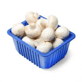 Mushrooms - 1 Pack