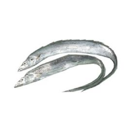 Ribbon/Belt Fish /Vaala  - 500 gm